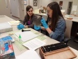 Glass Slide and Plate Preservation